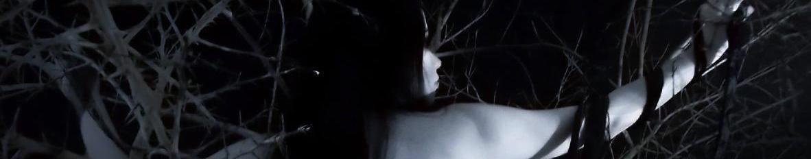 Imagem de capa de Ákia