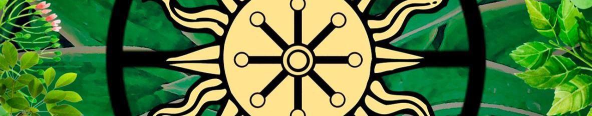 Imagem de capa de Círculo Piaga