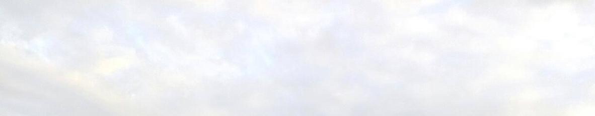 Imagem de capa de IVO OLIVEIRA