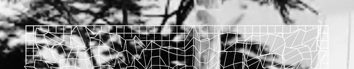 Imagem de capa de hoovaranas