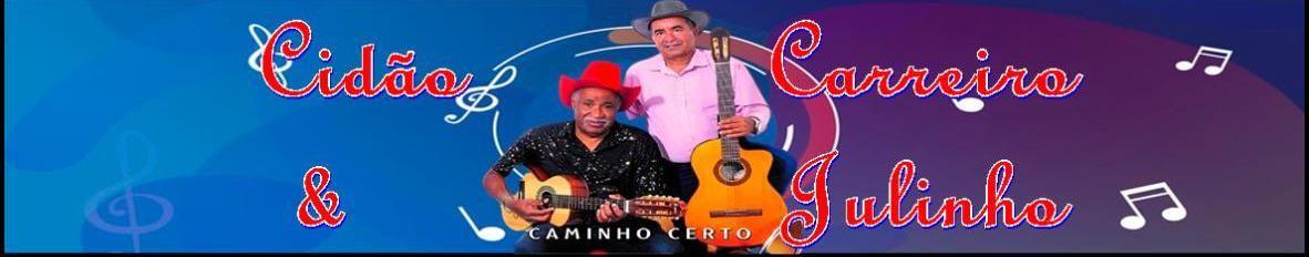 Imagem de capa de Cidão Carreiro e Julinho
