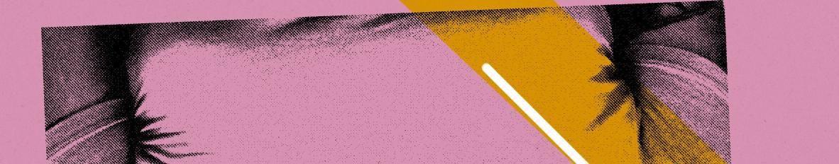 Imagem de capa de Yanna