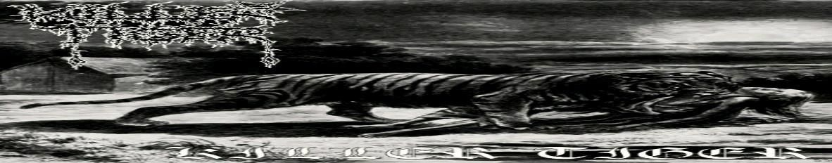 Imagem de capa de Killer Tiger