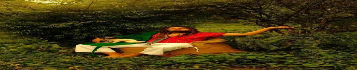 Imagem de capa de Felipe Valderrama