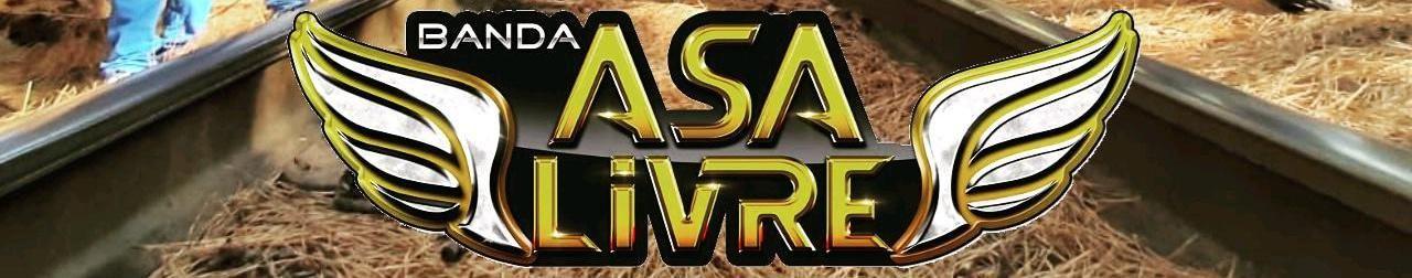Imagem de capa de Banda Asa Livre