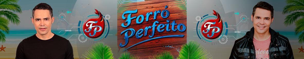 Imagem de capa de Forró Perfeito