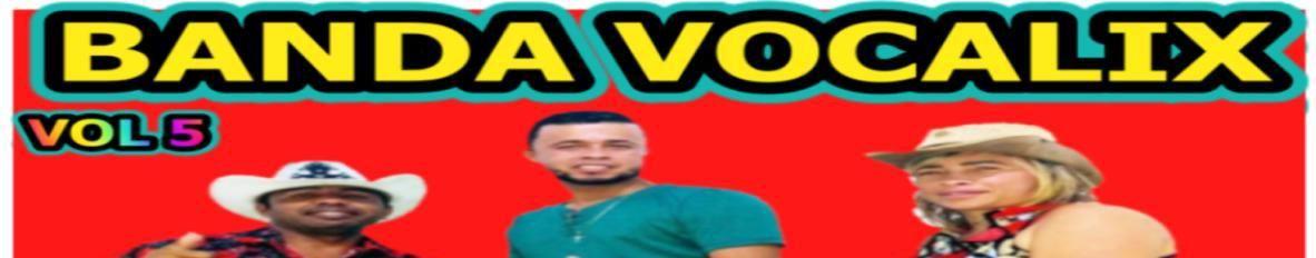 Imagem de capa de Banda Vocalix