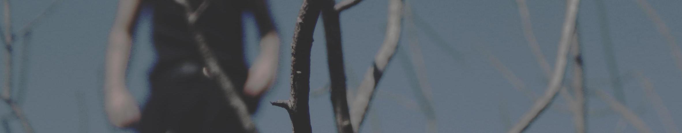 Imagem de capa de Thales Siqueira