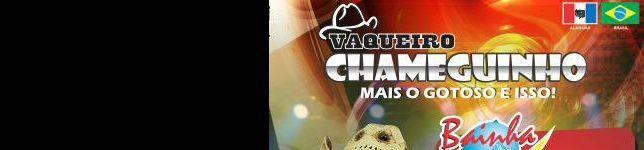 VAQUEIRO CHAMEGUINHO