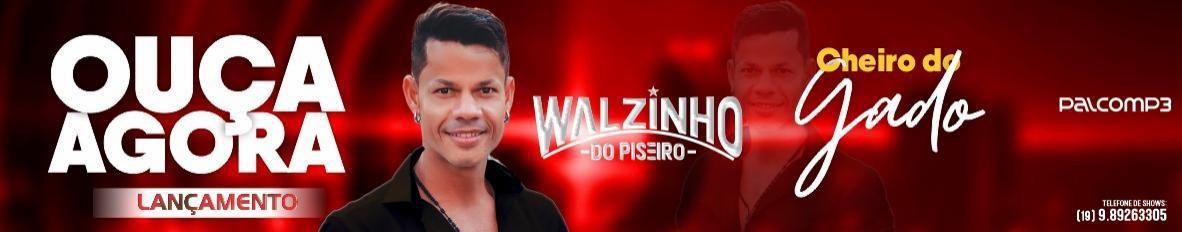 Imagem de capa de Walzinho Do Piseiro