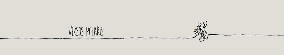 Imagem de capa de Versos Polaris