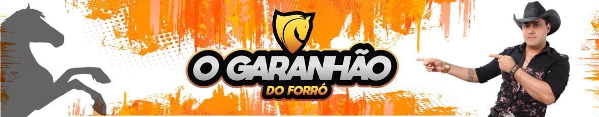 Imagem de capa de O GARANHÃO DO FORRÓ