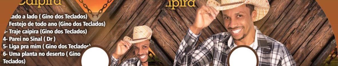 Imagem de capa de Gino dos Teclados