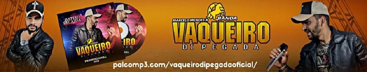 Imagem de capa de Marcelo Mendes Banda Vaqueiro di Pe