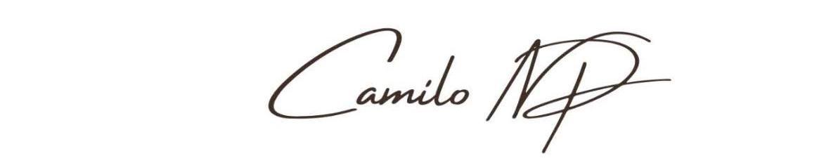 Imagem de capa de Camilo NP