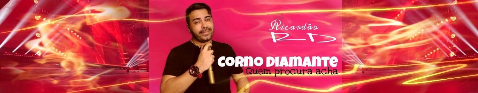 Imagem de capa de Ricardão RD
