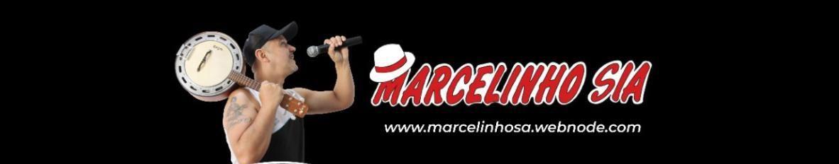 Imagem de capa de Marcelinho S/A