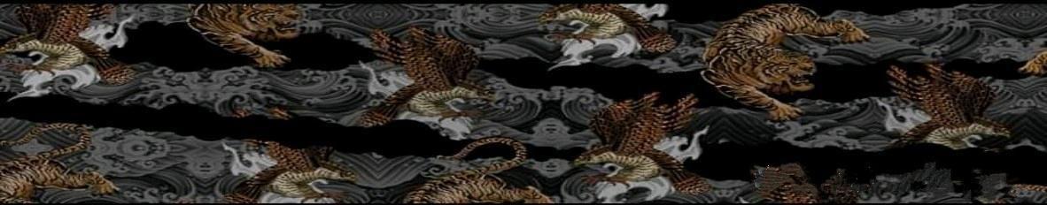 Imagem de capa de Homer Rap Goiás