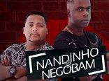 MCs Nandinho e Nego Bam