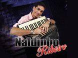 Naldinho Ribeiro - Forró Pé de Serra