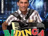 Bidinga Do Acordeon