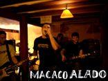 Macaco Alado