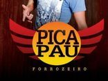 PICA PAU FORROZEIRO