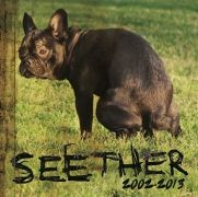 Seether: 2002-2013}