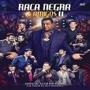 Raça Negra & Amigos II