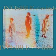 Invisible}
