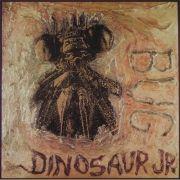 Ear-Bleeding Country: The Best of Dinosaur Jr.