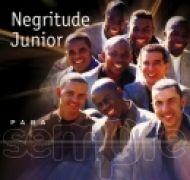 Para Sempre: Negritude Junior