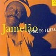 A Voz do Samba - Vol. 2