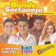 Um Amor de Forró - Vol. 1}