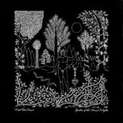 Garden Of The Arcane Delights (EP)