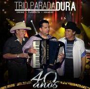 O Trio do Brasil - 40 Anos (Ao Vivo)