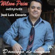 Domingo de Inverno - Wilson Paim Interpreta José Luiz Casarin}