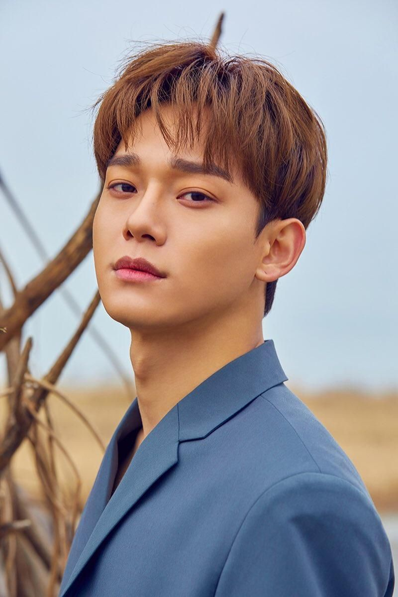 Chen (EXO) fotos (21 fotos) - LETRAS.MUS.BR