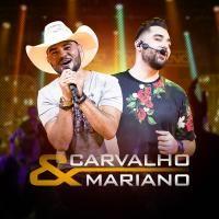Carvalho e Mariano