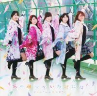 Team Hanayamata