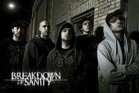 Breakdown Of Sanity
