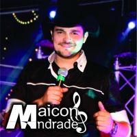 Cowboy do Cerrado