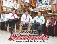 Trio Sintonia