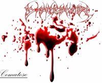Disfleshedy
