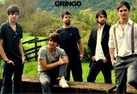 Gringo A Bordo