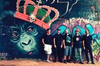 Chimpanzés de Gaveta