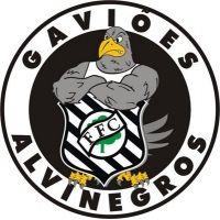 Gaviões Alvinegros