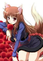 Spice And Wolf (anime)