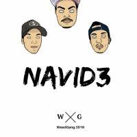 Navid3