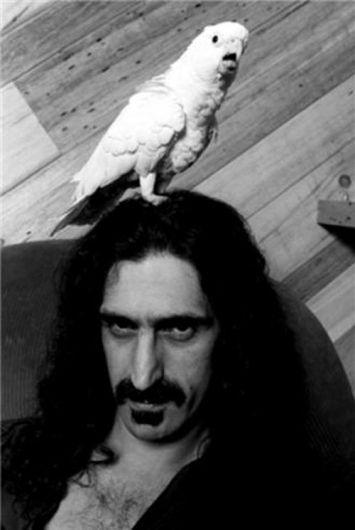Zappa Fuck Yourself 109